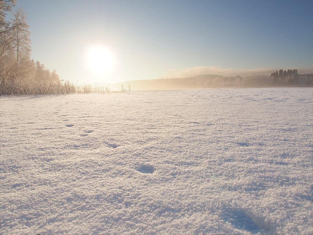Tuomiojärvi (lake Tuomiojärvi)